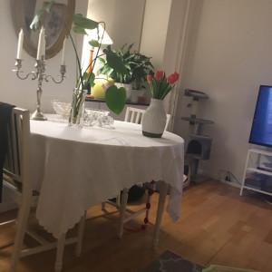 Carita Söder